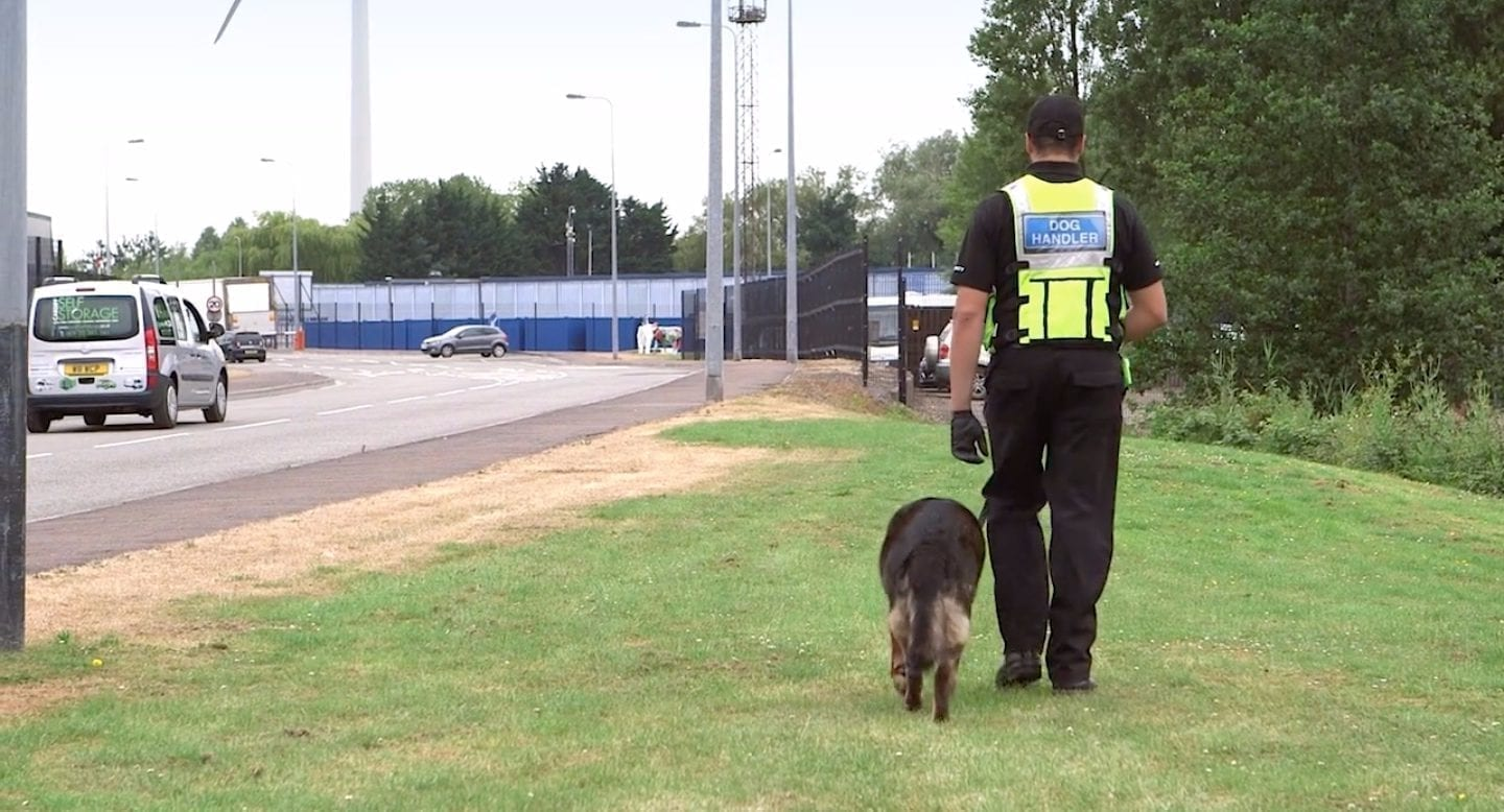 blue self storage in cardiff - our security dog patrols