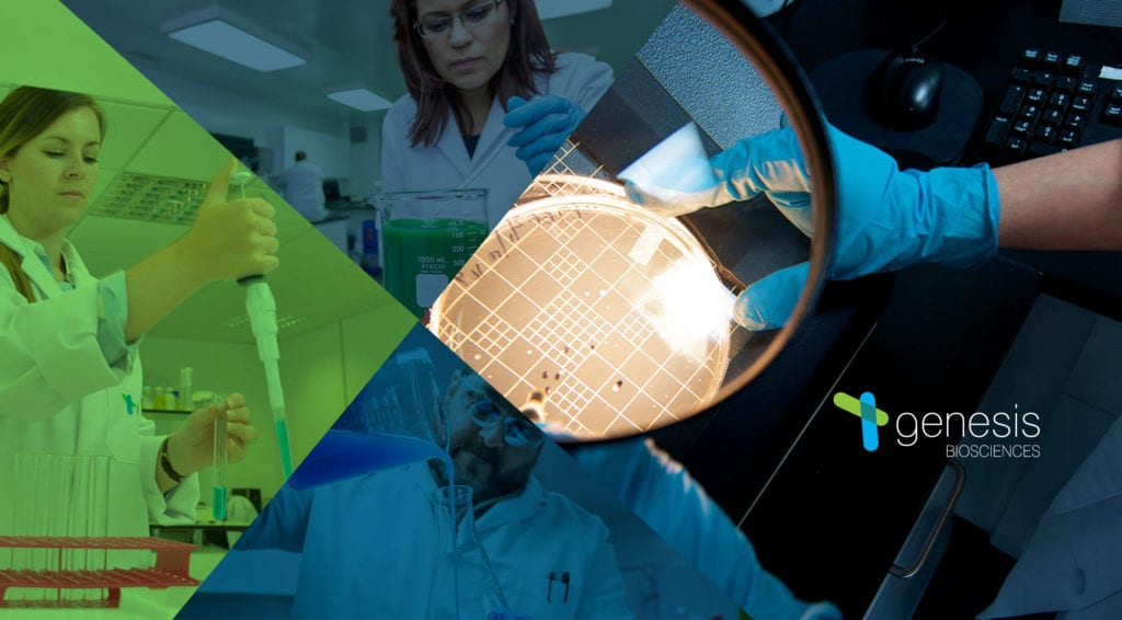 Under the microscope: a closer look at our industry-leading experts across the UK & US - Genesis Biosciences team